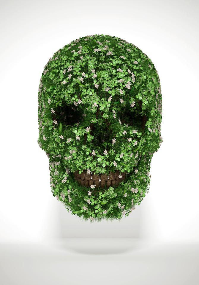 Skull Art Luke Dwyer Visual Effect Artist Motion